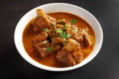 咖喱印第安羊肉样式 库存照片