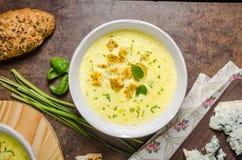 咖喱汤用油煎方型小面包片 图库摄影