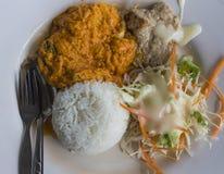 咖喱油煎的叉子用米和slad 库存照片
