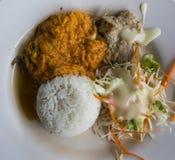 咖喱油煎的叉子用米和slad 免版税库存照片