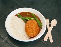 咖喱油煎的猪肉用米 免版税库存图片