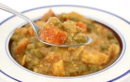 咖喱混杂的调味汁一匙蔬菜 免版税库存照片