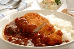 咖喱饭用猪肉炸肉排,称`在日文的Katsu咖喱` 免版税库存照片