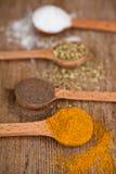 咖喱,胡椒,牛至和烹调盐 免版税库存照片