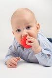 咬住一个红色玩具的男婴 免版税图库摄影