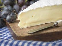 咸味干乳酪乳酪楔子 免版税库存图片