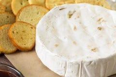 咸味干乳酪乳酪 图库摄影