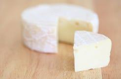 咸味干乳酪干酪 免版税图库摄影