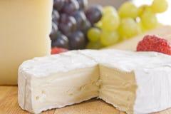 咸味干乳酪接近的部分 库存照片