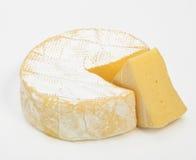 咸味干乳酪 免版税库存图片