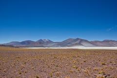 咸和干旱的区域风景在阿塔卡马高原 免版税图库摄影