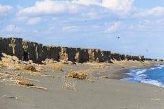 咸湖的海岸 免版税库存照片
