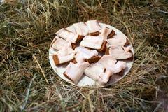 咸猪肉油脂和黑麦面包 用干草盖的桌 免版税库存图片
