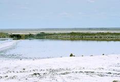 咸的湖 库存图片