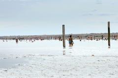 咸的湖 库存照片