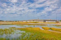 咸领域在Nin,克罗地亚 免版税库存照片