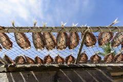咸鱼,干饵料在泰国市场上 图库摄影