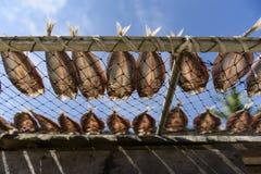 咸鱼,干饵料在泰国市场上 免版税库存图片