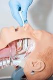 鼻咽管用于打开空中航线用于打开空中航线 库存图片