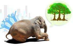 哀伤的大象小牛 图库摄影
