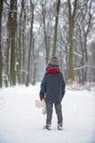 哀伤的失去的孩子,男孩在有玩具熊的,冬天一个森林里 库存照片