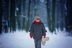 哀伤的失去的孩子,男孩在有玩具熊的,冬天一个森林里 免版税库存照片