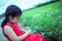 哀伤的孩子女孩在她的手上的拿着花失望为某人 库存图片