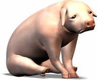 哀伤的猪 库存图片