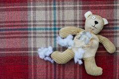 哀伤的被放弃的玩具熊 库存照片