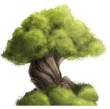 哀伤的结构树 免版税库存照片