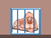 哀伤笼子的狗 免版税库存照片