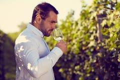 品尝白葡萄酒的酿酒商 库存照片