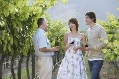 品尝红葡萄酒的人们在葡萄园里 库存照片