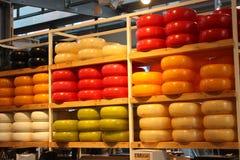 品尝美好的上颚的乳酪的鲜美和五颜六色的形式 乳制品特点荷兰 荷兰干酪的形式显示  库存照片