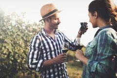 品尝酒的人们在葡萄园里 免版税库存照片