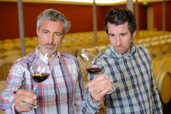 品尝酒的斟酒服务员在葡萄酒库里 免版税图库摄影