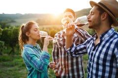 品尝酒的酒种植者在葡萄园里 免版税库存照片