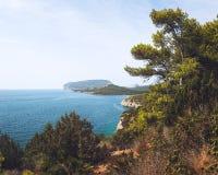 品柱卡奇亚半岛,沙丁鱼,意大利 图库摄影
