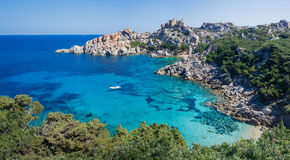 品柱介壳,撒丁岛,意大利 免版税图库摄影