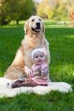 品种小女孩和狗一只金毛猎犬 库存图片