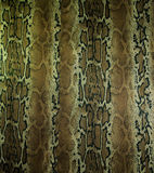 织品纹理镶边背景的蛇皮革 库存图片