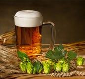 品脱与原材料的啤酒啤酒生产的 免版税库存照片