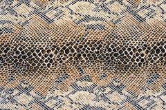 织品镶边蛇皮革纹理  免版税图库摄影