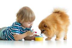 哄骗使用与狗和哺养他的与玩具匙子 免版税库存照片