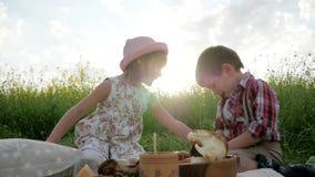 哄骗在绿色公园野餐的戏剧在太阳光阴霾,家庭在日落的野餐自然,滑稽逗人喜爱的小孩吃,孩子 股票录像