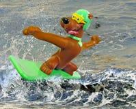 哇 聪明的冲浪的宠物 免版税库存图片