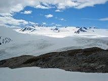 哈丁Icefield和出口冰川Kenai阿拉斯加 库存照片