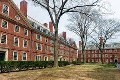 哈佛围场的剑桥麻省美国霍利斯霍尔和Stoughton霍尔 库存照片