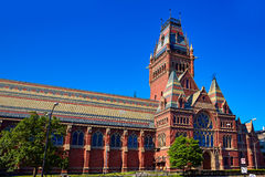哈佛大学历史建筑在剑桥 免版税库存照片