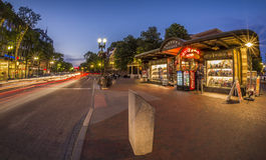 哈佛广场在剑桥, MA,美国 库存照片